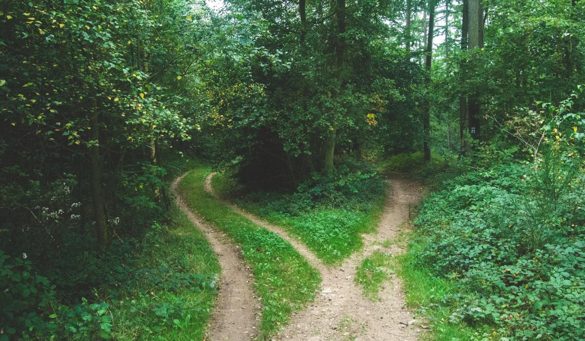 2 paths-2-1